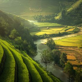 Vietnam Daily Tours